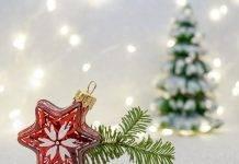 Decorazioni Natalizie Natale