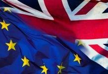 Brexit Giornalista Rachel Johnson