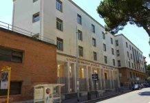 Liceo Giulio Cesare Roma Albero