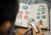 Manoscritto Voynich, più di 600 anni dopo svelato il codice