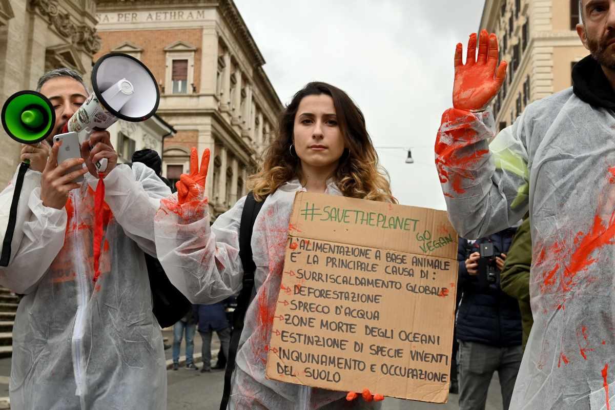 Fridays For Future Italia manifestanti