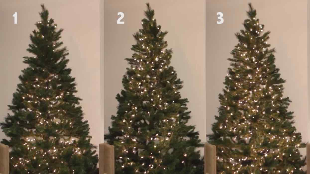 Natale, il trucco perfetto per addobbare l'albero - VIDEO