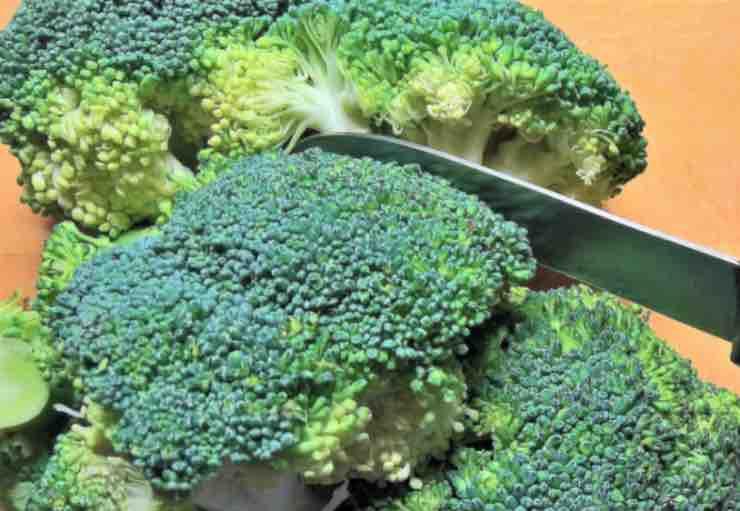 Broccoli, proprietà e miti da sfatare: ecco il parere degli esperti