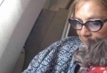 """Romina Power, l'ex di Albano lancia l'appello: """"Daisy vi supplica"""""""