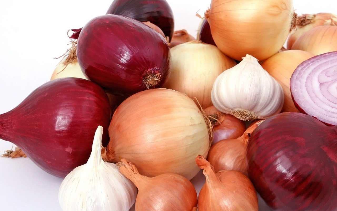 Cipolla, benefici e proprietà: un portento contro l'influenza e i chili di troppo