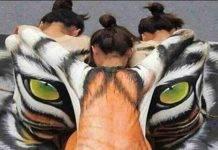 Test psicologico: cosa vedi prima in quest'immagine ?