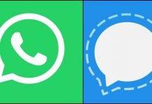 WhatsApp, arriva Signal: l'app che punta sulla sicurezza lancia la sfida