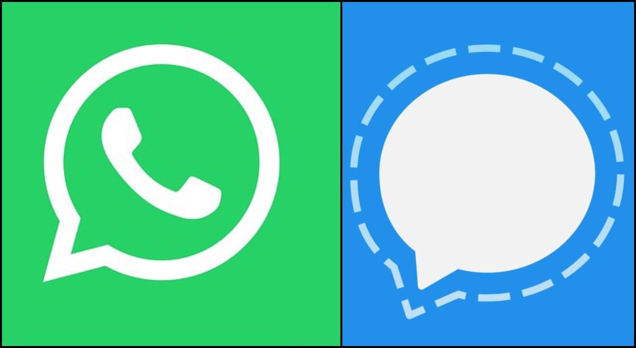 WhatsApp, arriva Signal: l'app che punta sulla sicurezza lan