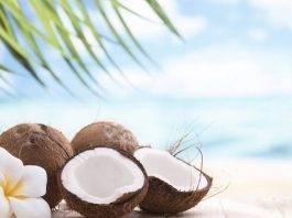 Cocco: proprietà e benefici per la salute di questo frutto esotico