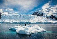 Allerta clima: temperature mai raggiunte, non c'è neve in Antartide