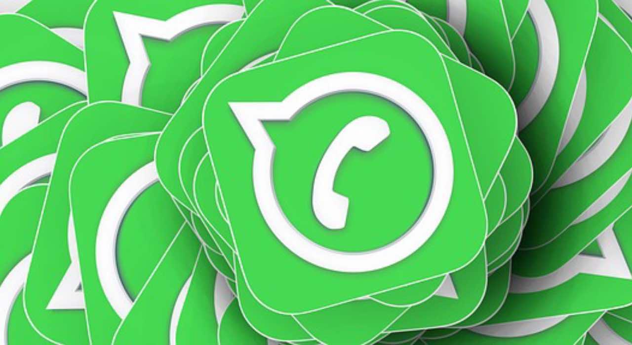 WhatsApp, pericolo foto profilo: la soluzione a cui in pochi pensano