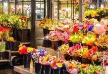 Coronavirus, il grande cuore del fioraio: tutti i fiori al cimitero della città