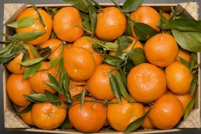 Cesto di mandarini, vitamina C