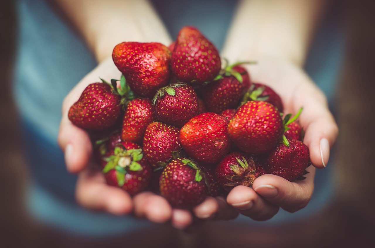 Frutta e verdura di stagione: cosa mettere nel carrello della spesa ad aprile