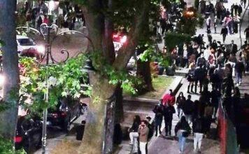 Rispuntano le Sardine: denunciano sindaco di Avellino per movida