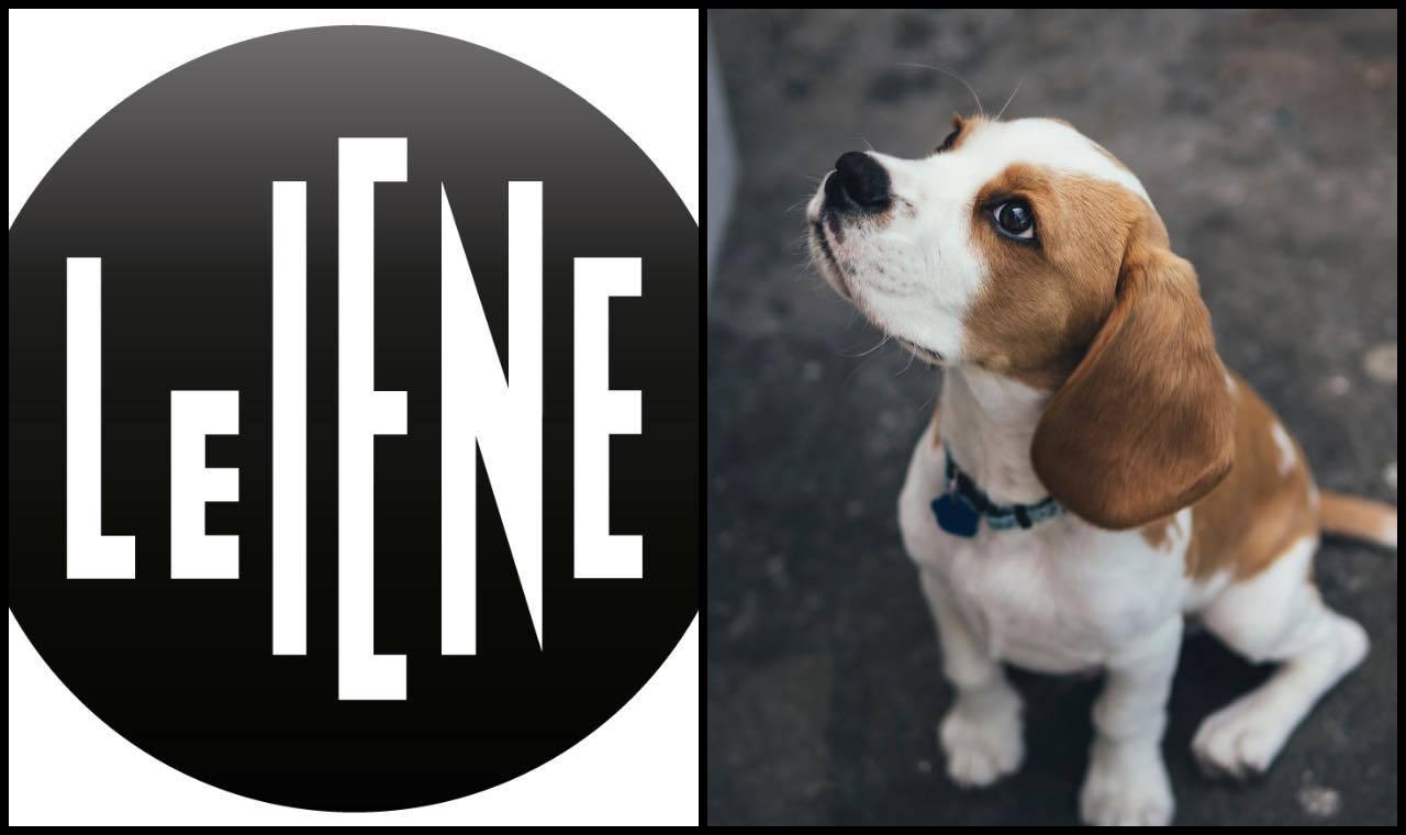Le Iene: Marc Ching, famoso animalista, nei guai? Video