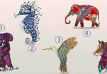 Test personalità: 5 animali, ma solo il primo visto ti dirà chi sei