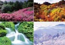 Test personalità, immagini e colori: qual è la tua stagione preferita?