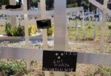 Cimitero feti Roma