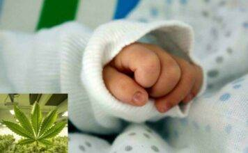Cade in un sonno profondo: bimba di 14 mesi in coma per la marijuana