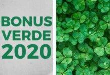 Bonus verde 2020: scopriamo cos'è ed in cosa consiste
