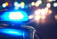 polizia, carabinieri, truffa, furto