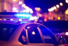 Polizia (AdobeStock)