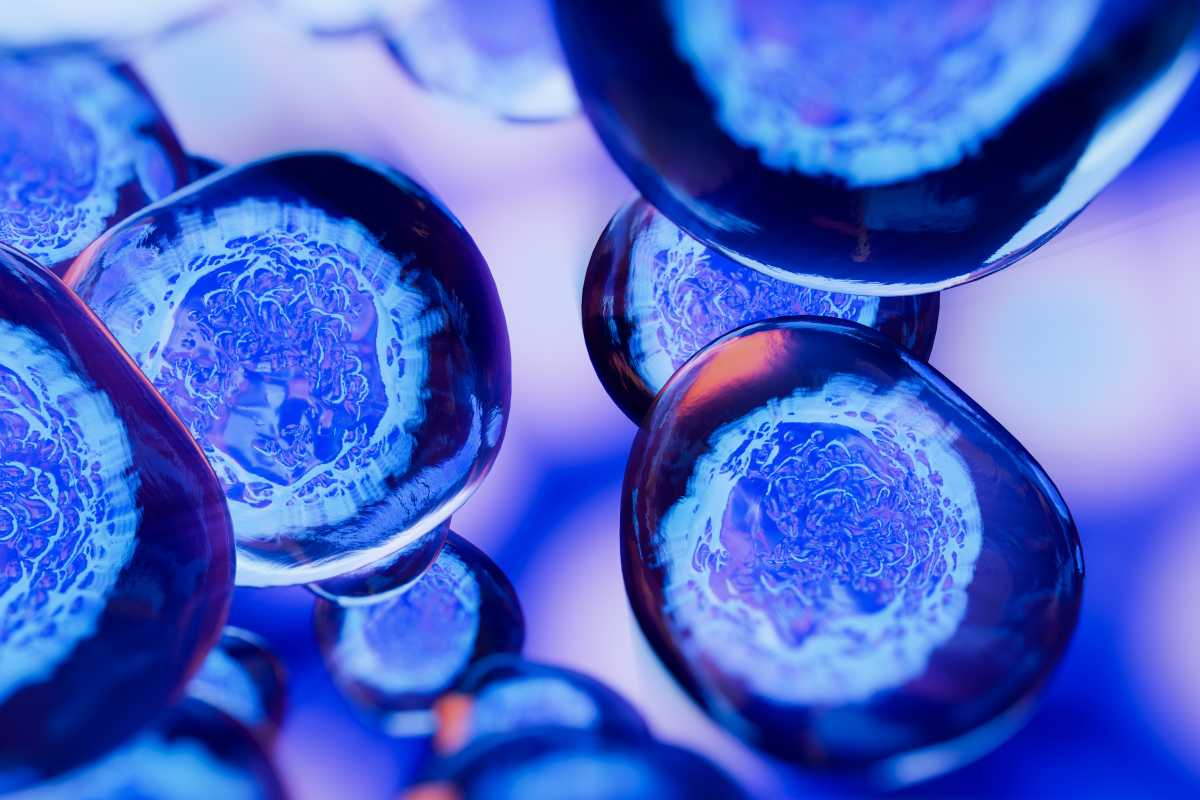 Cellule cancro (Adobe Stock)