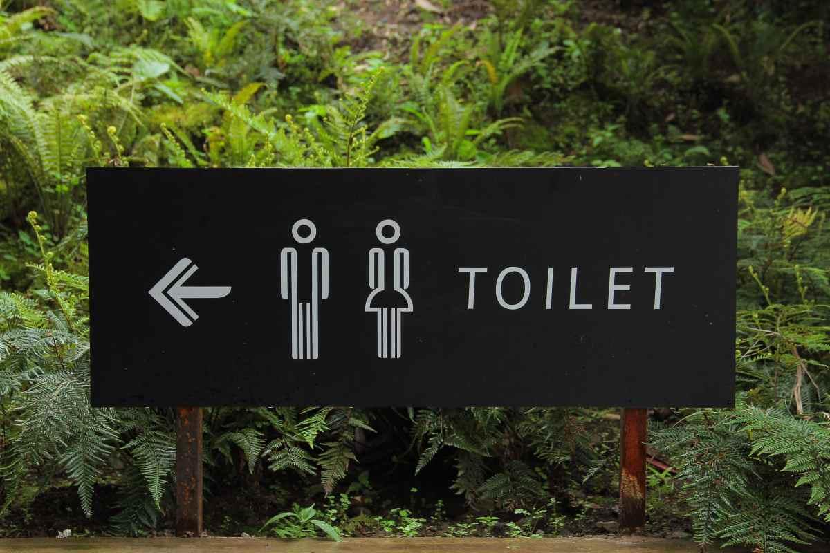 WC - Toilet (Pexels - Hafidz Alifuddin)