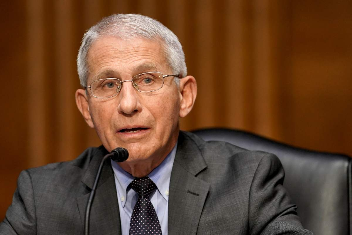 Anthony Fauci: FauciGate (GettyImages)