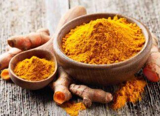 Curry e Curcuma (AdobeStock)