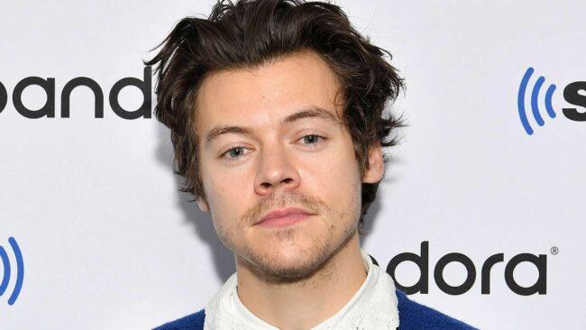 Harry Styles avvistato a Venezia: l'incredibile reazione di una fan