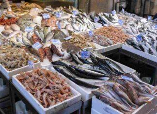 Attenzione alla presenza di mercurio nel pesce (AdobeStock)
