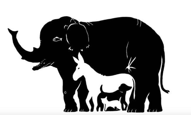 Test personalità, quanti animali vedi? La risposta è stupefacente