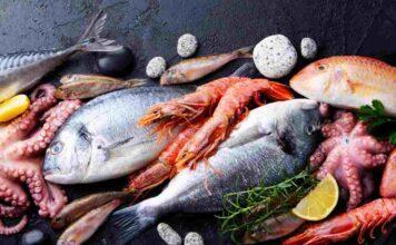 Chi è vegetariano può mangiare il pesce? La risposta vi sconvolgerà